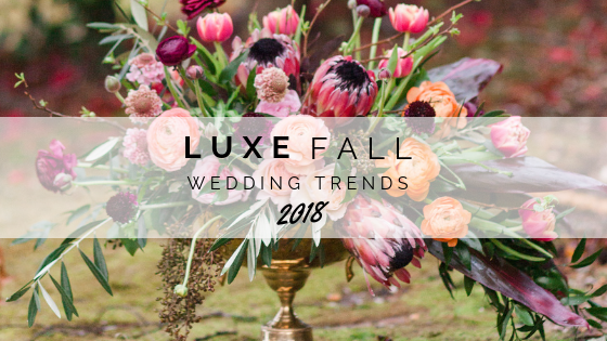 Luxe Fall Trends_Blog.png