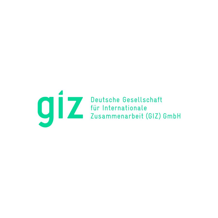 Deutsche Gesellschaft für Internationale Zusammenarbeit.png