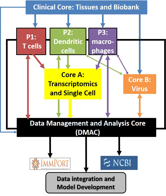 HIPC data.jpg