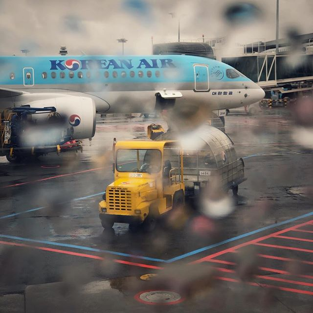 wondering the future of Korean Air. #koreanair #airport #plane #rain #iphone #smartphonephotography #대한항공 #공항 #김포공항 #아이폰 #스마트폰사진