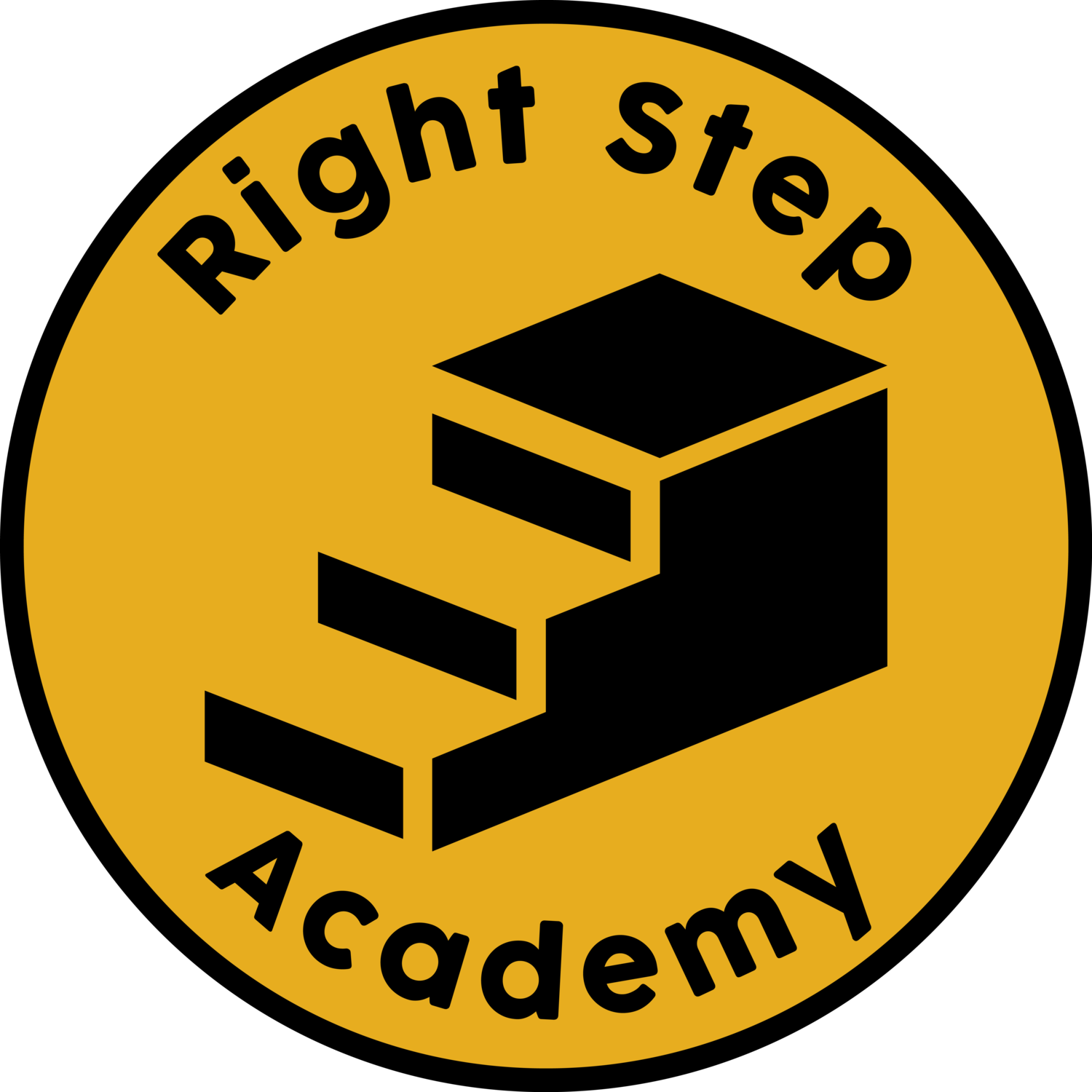 Right Step Academy