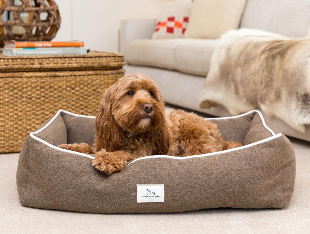 MPW dogbed.jpg