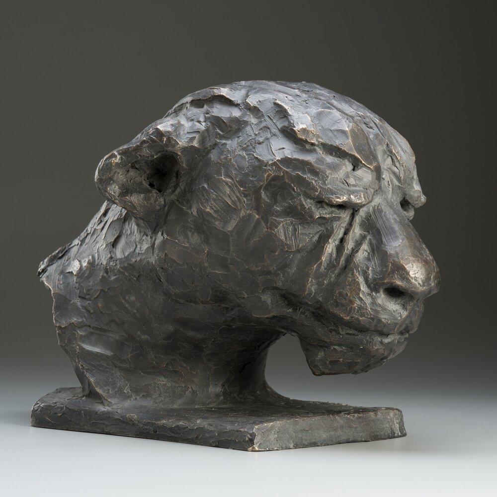 Panthera Bust.jpg