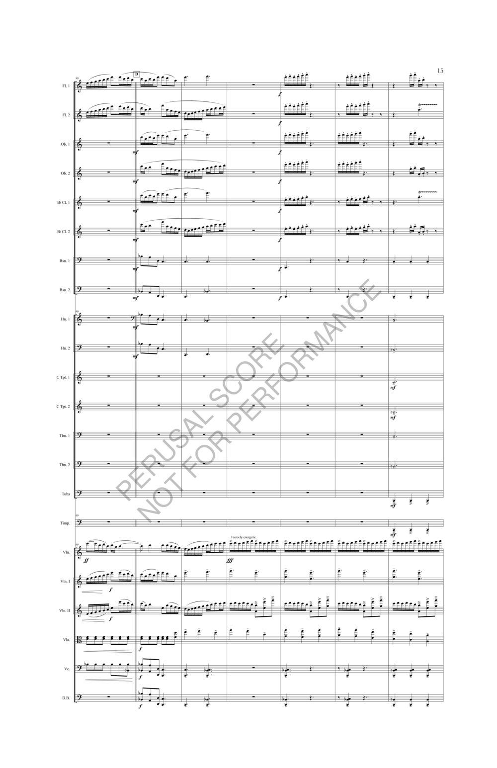 Boyd Sybil Score-watermark (1)-021.jpg