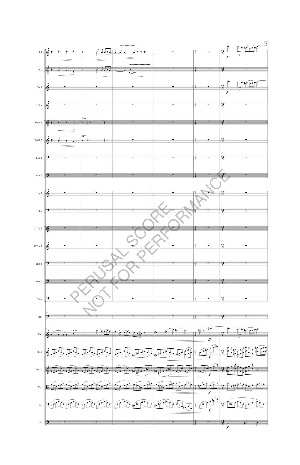 Boyd Sybil Score-watermark (1)-043.jpg