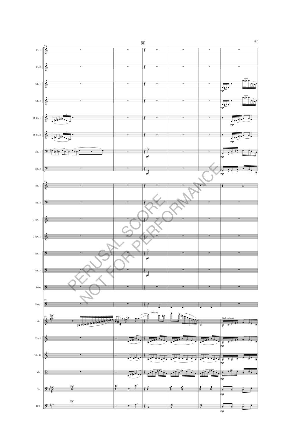 Boyd Sybil Score-watermark (1)-053.jpg