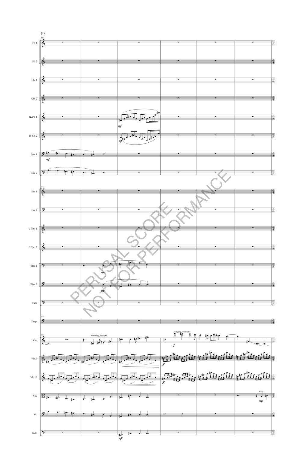 Boyd Sybil Score-watermark (1)-118.jpg