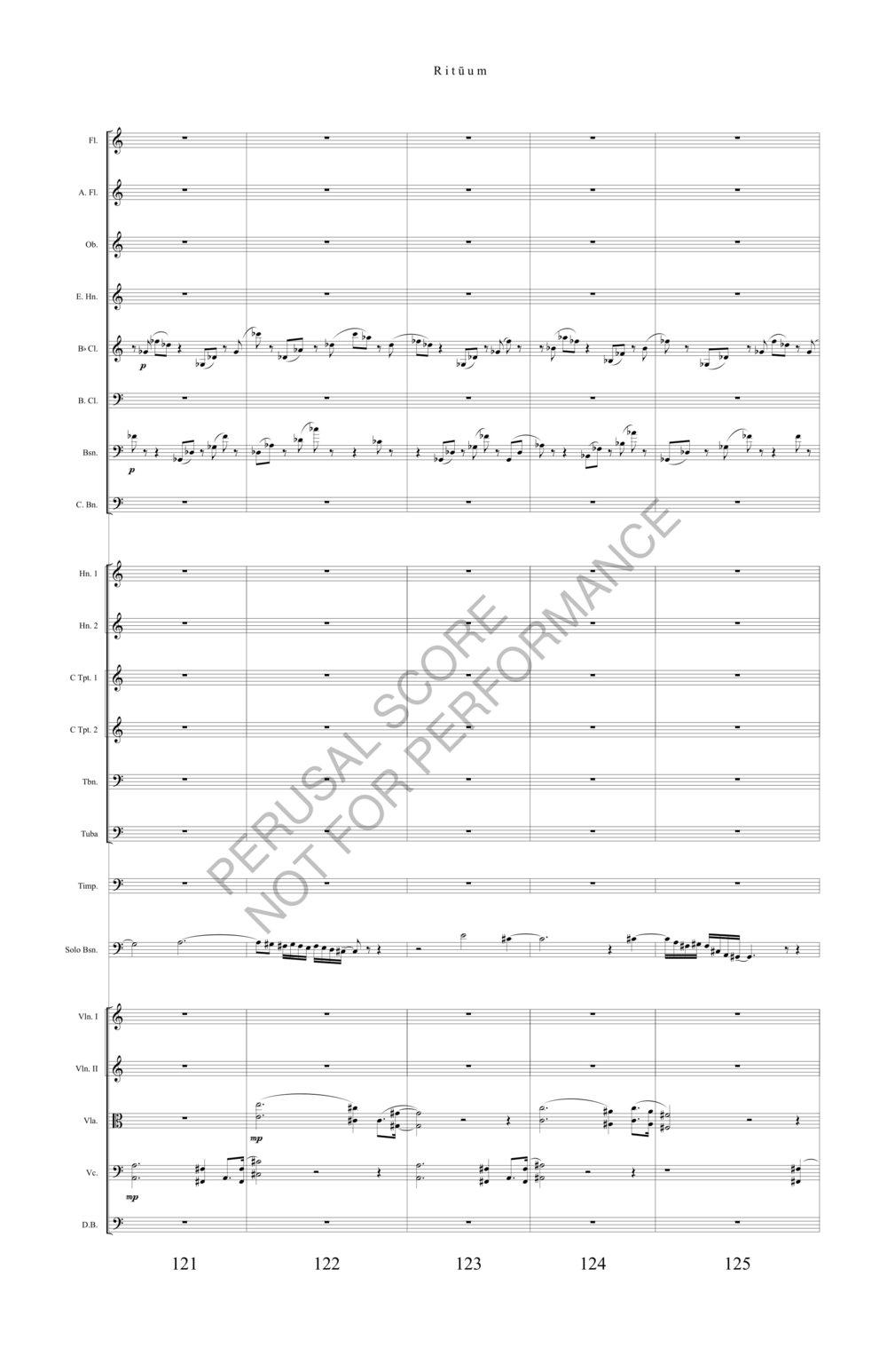 Boyd Rituum Score-watermark (1)-31.jpg