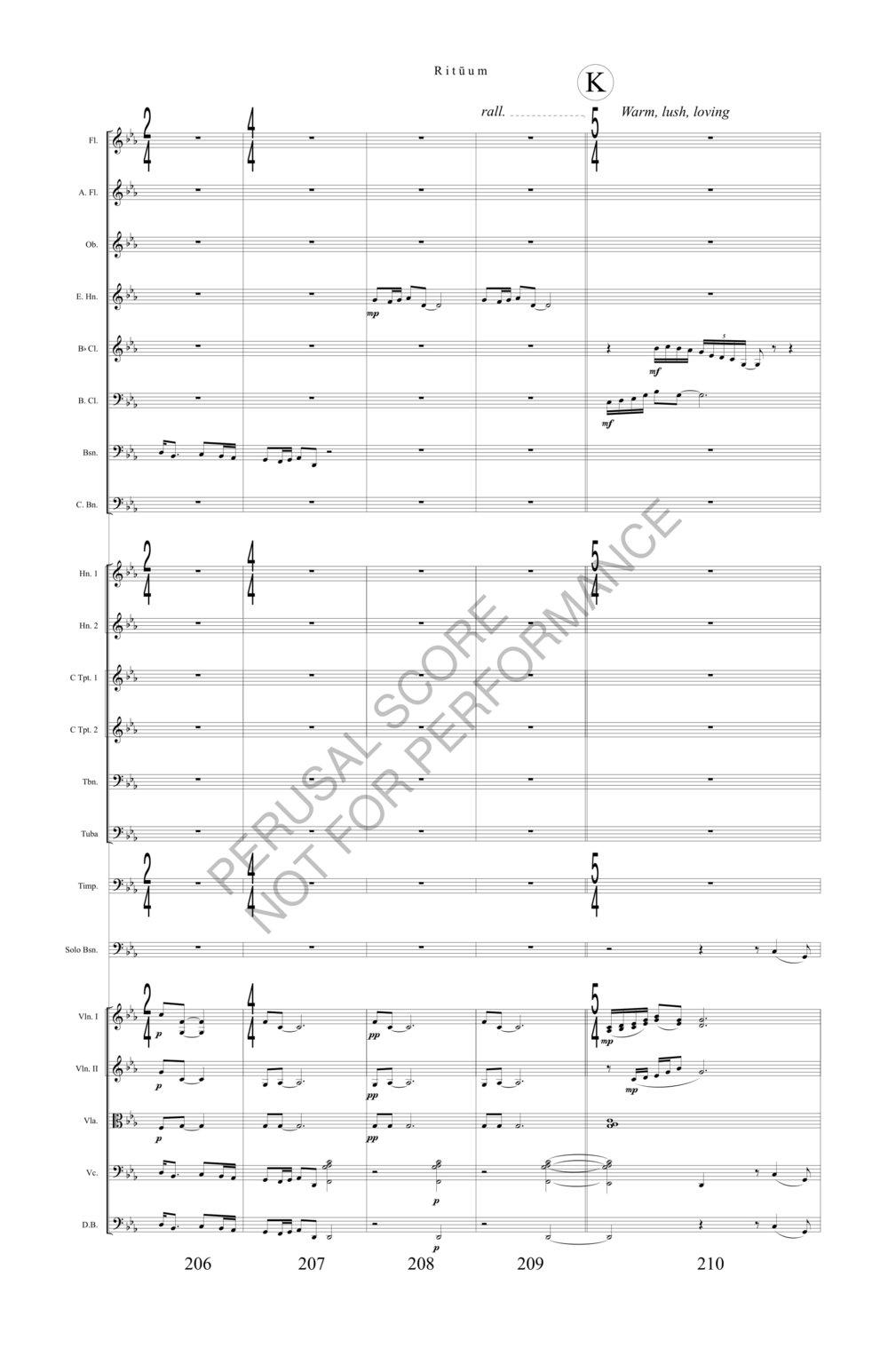 Boyd Rituum Score-watermark (1)-49.jpg