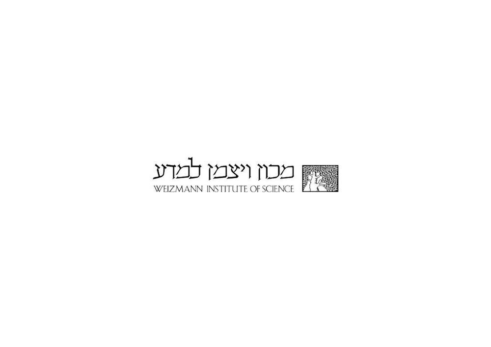לוגו אפור מכון וייצמן.jpg
