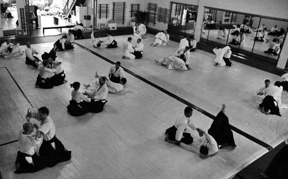 dojo-with-full-mat-sawariwaza.jpg