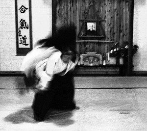 sensei2-300x267.jpg