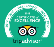 Trip Advisor - Hall of Fame - Low Head Penguin Tours