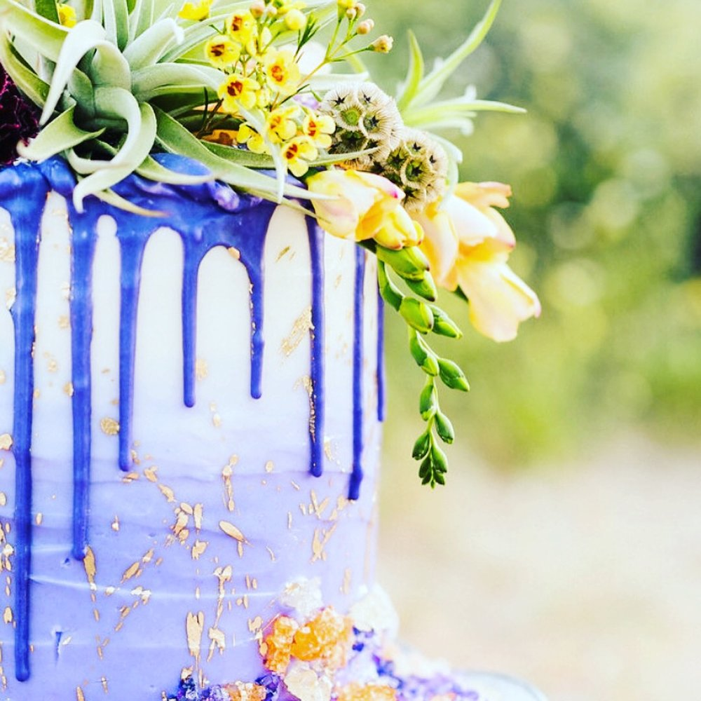 Purple Drip Cake - Air Plant Topper