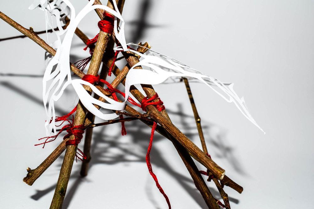 Anatomical Sculptures -