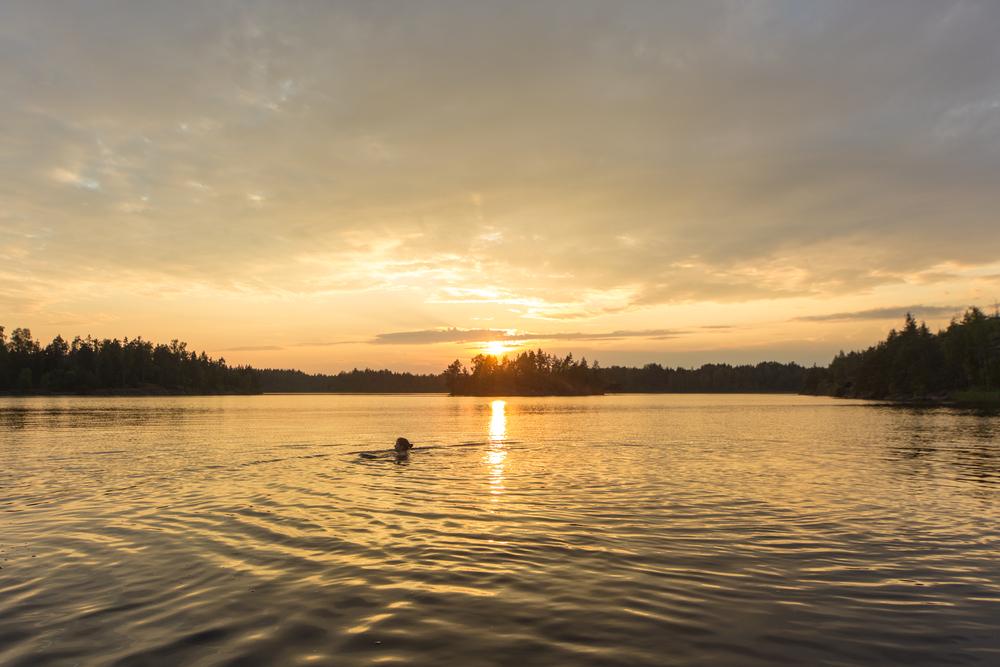 - Skriva är som att simma naken i en sjö. Ensam.