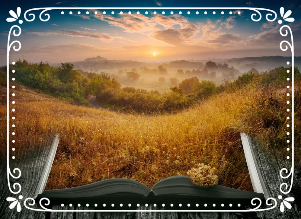 - För mig är novellen ett sätt att hinna läsa. Den är också mindfulness, att hitta närvaro igen. Den är också inspiration till att själv skriva.