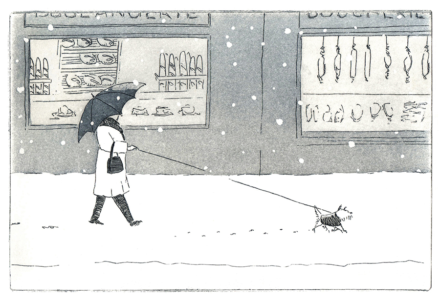 Paris under snow: dog walking