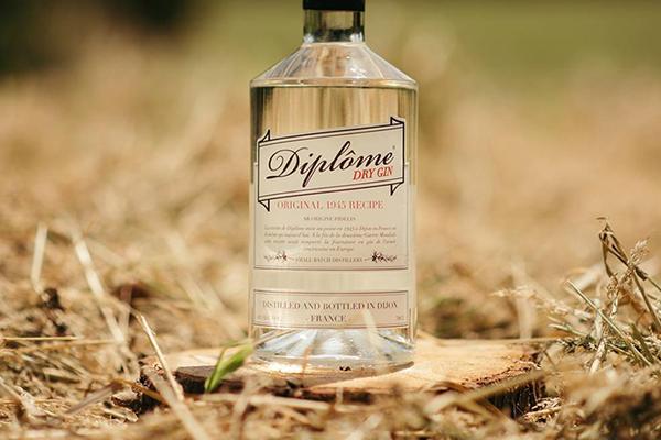 Diplôme Gin - social media