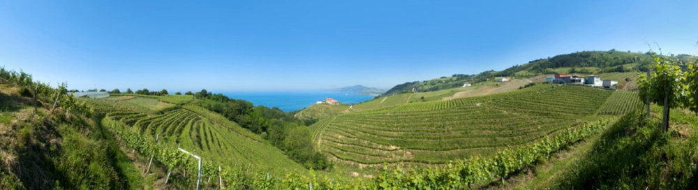 Wine-of-th-month-txakoli-THE-BASQUE-COUNTRY-Wine-Confidantepsd.jpg
