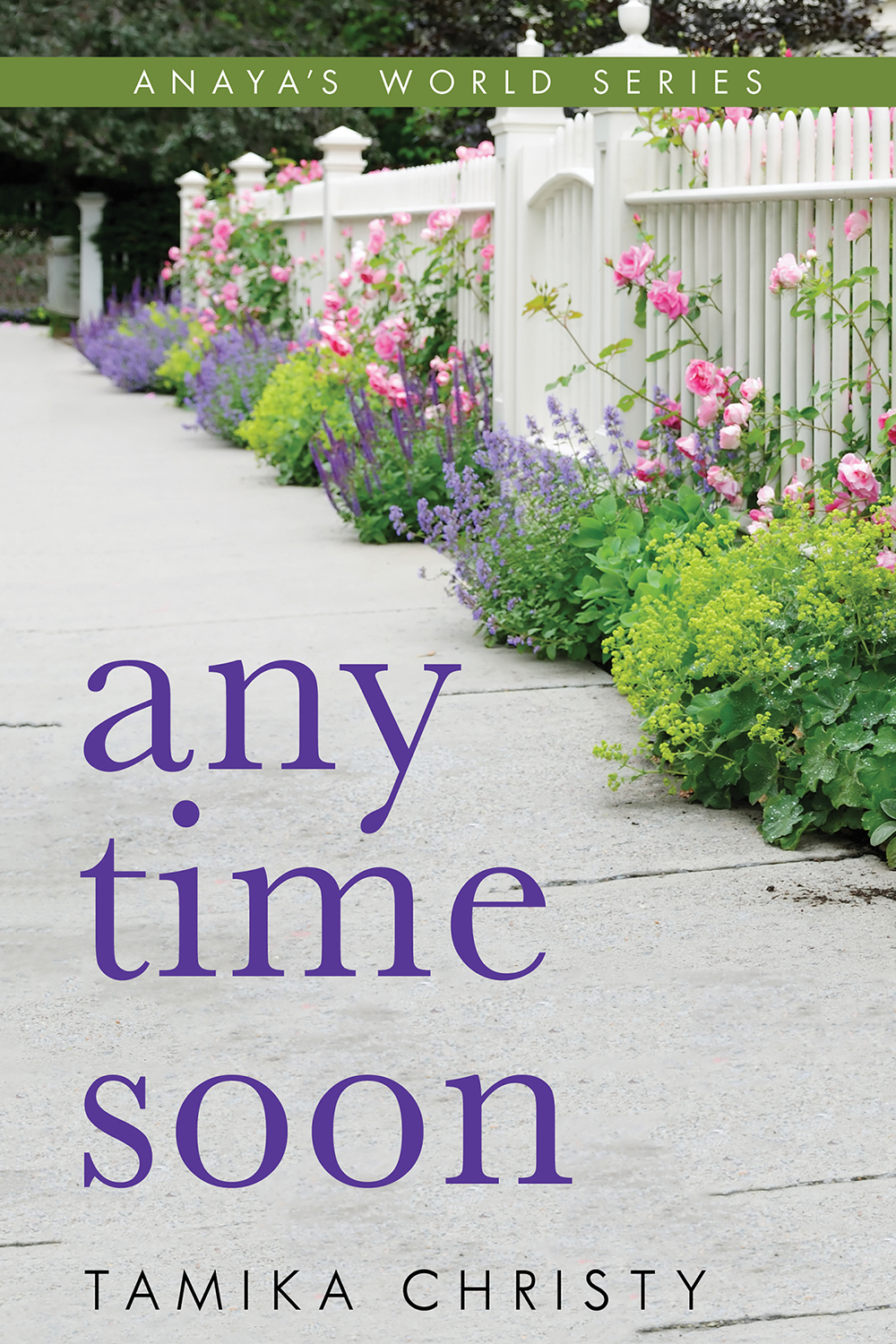 Anytime Soon Front Cover IPG.jpg