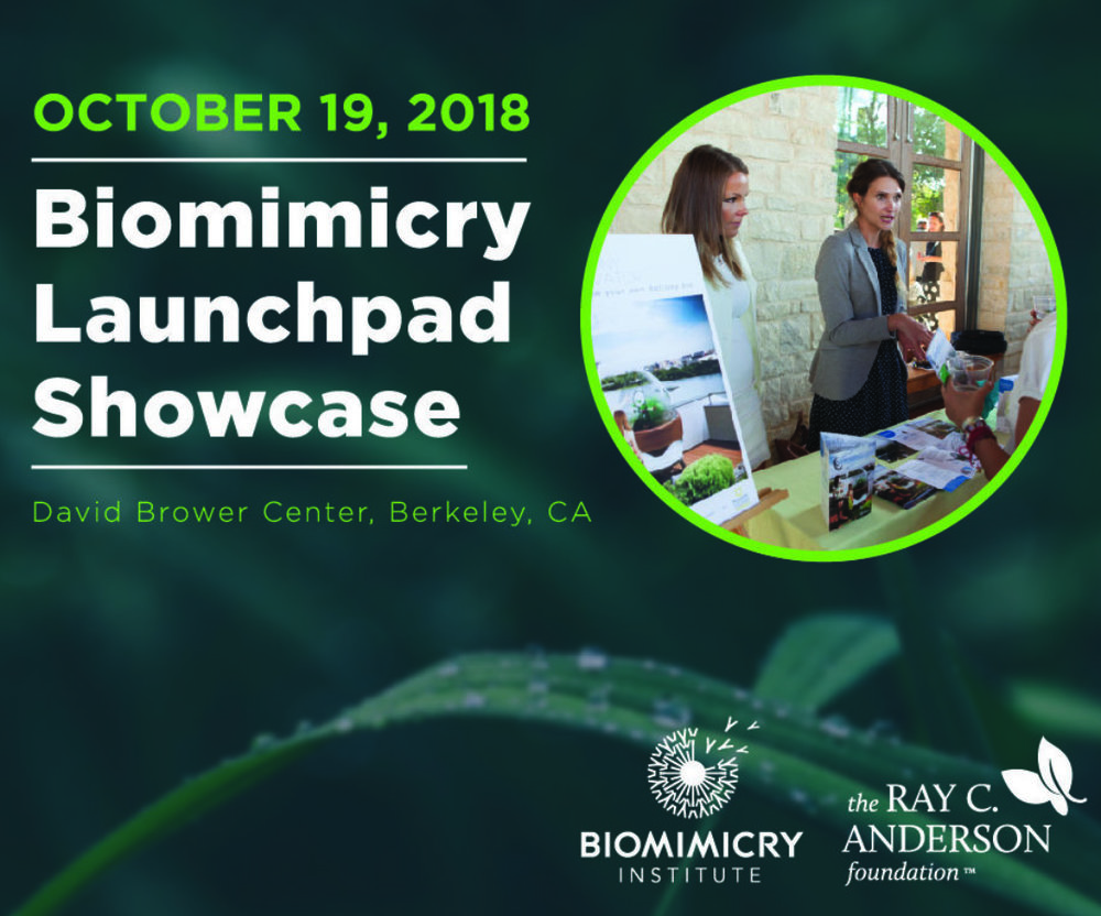 Biomimicry Launchpad Showcase     Berkeley, CA - Oct 19, 2018
