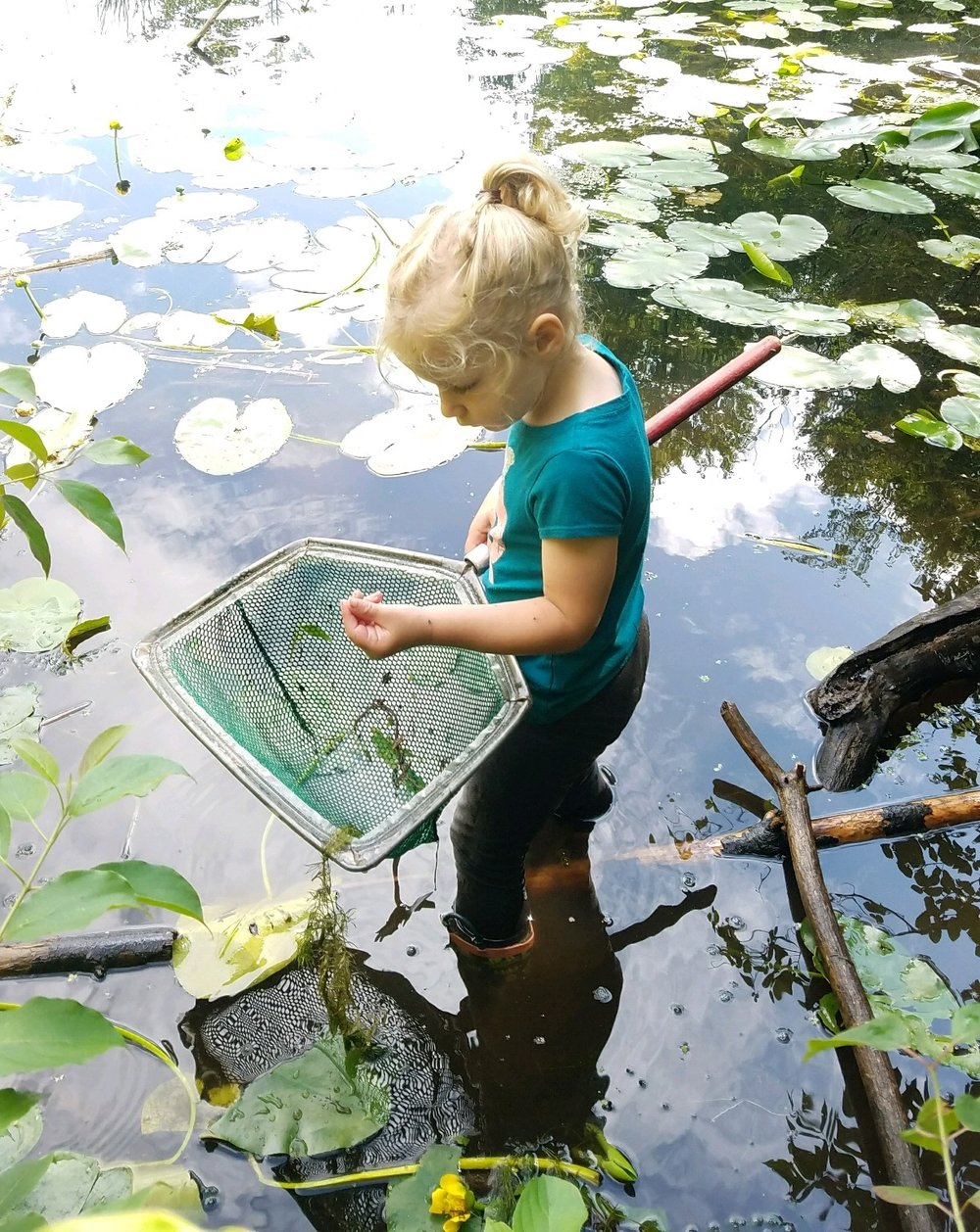 girl pond dipping.jpg