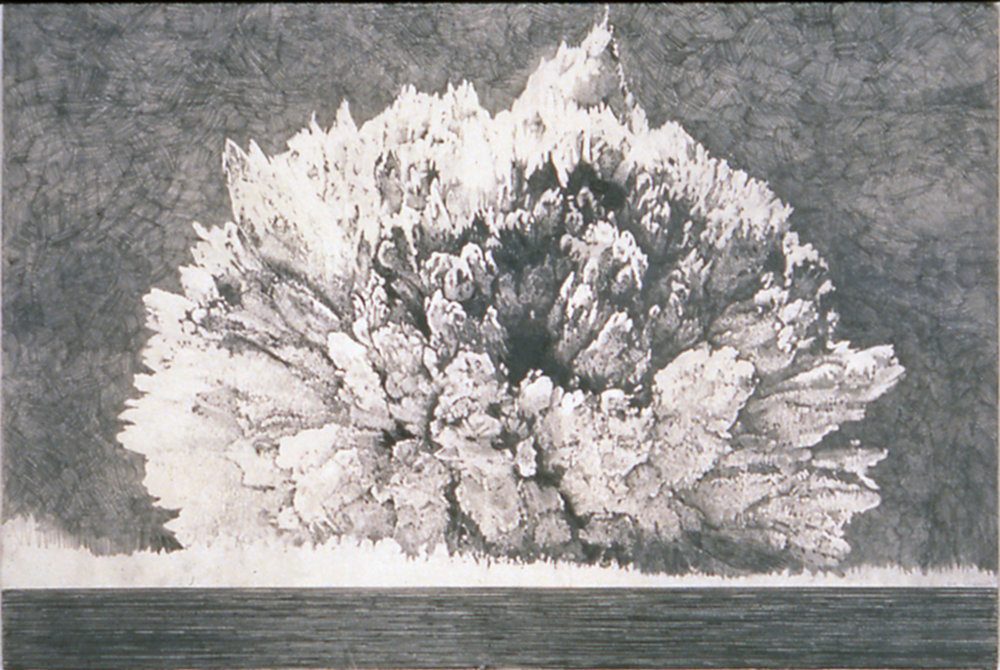 Blast, 1997-1998, Graphite on Paper, 40 x 60 inches, Tang Museum of Art Skidmore College