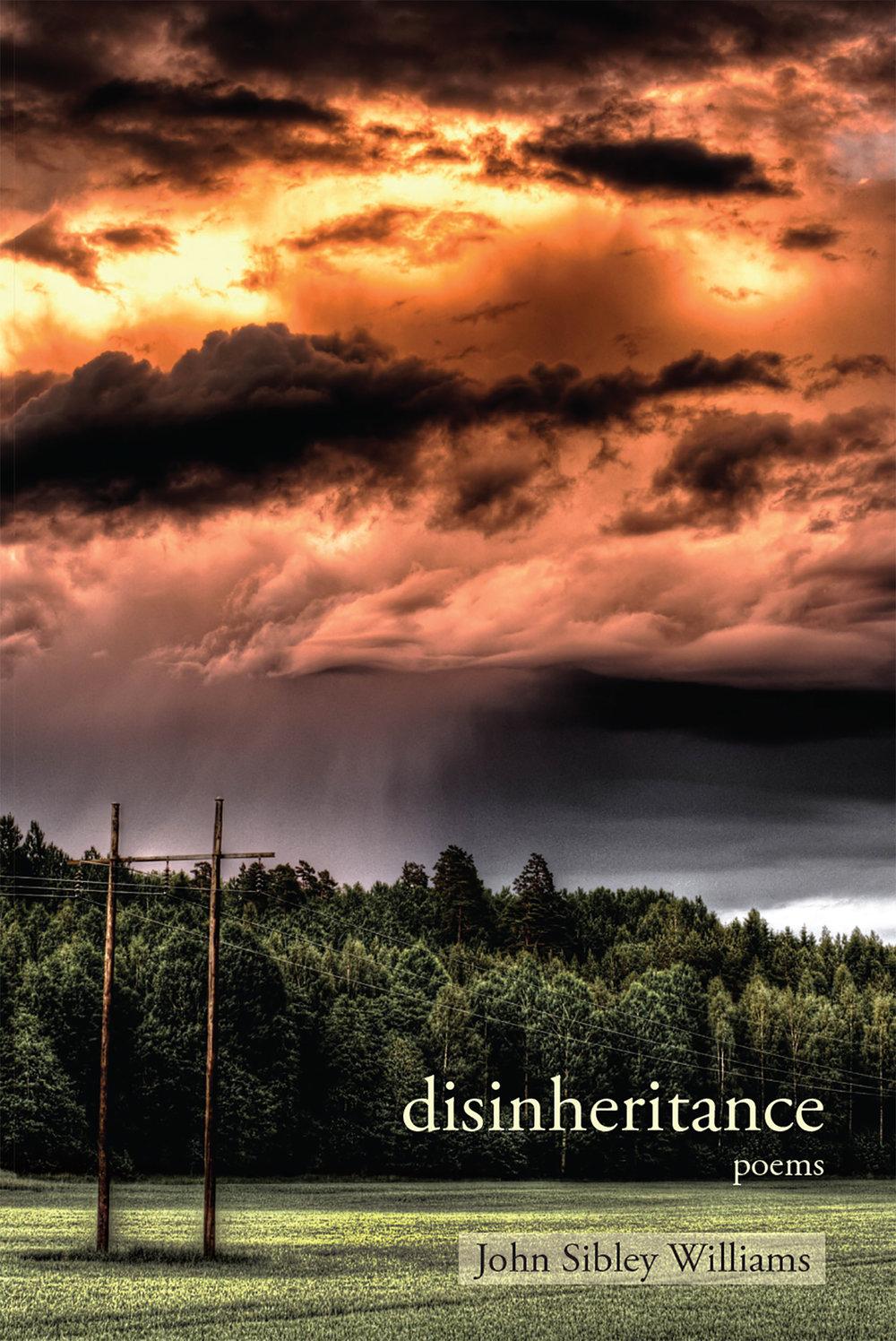 Disinheritance front cover.jpg