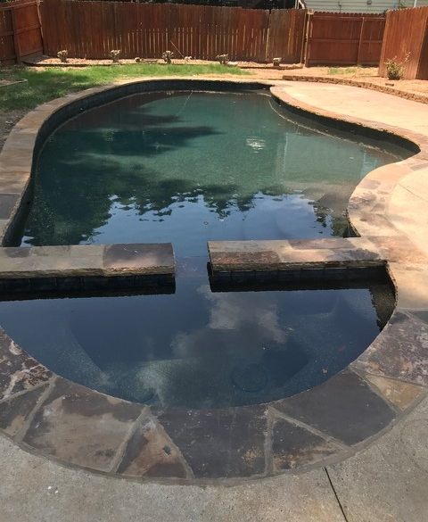 Napolitano Pool.jpg