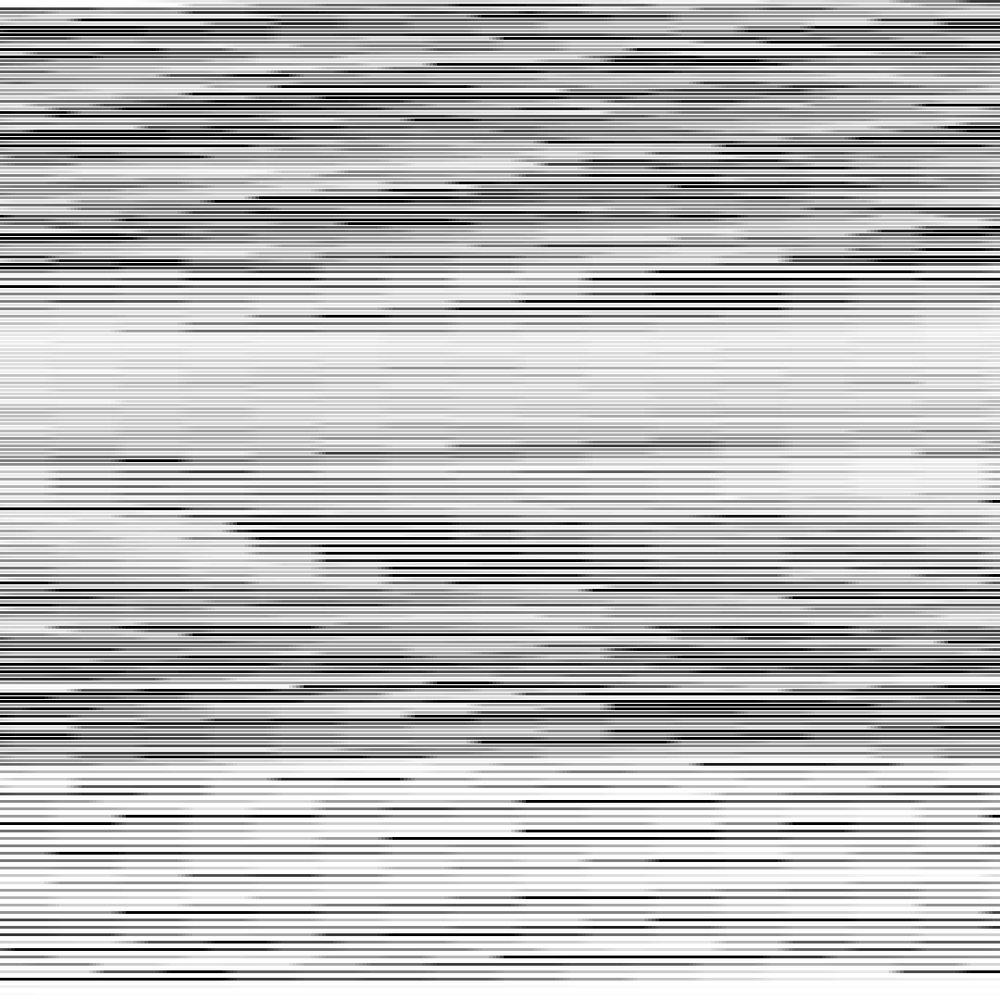 Similitud  (Himnos Nacionales MX-US) Impresión en polyester metalizado Ed. 3 + 1AP 108 x 108 cm. 2011