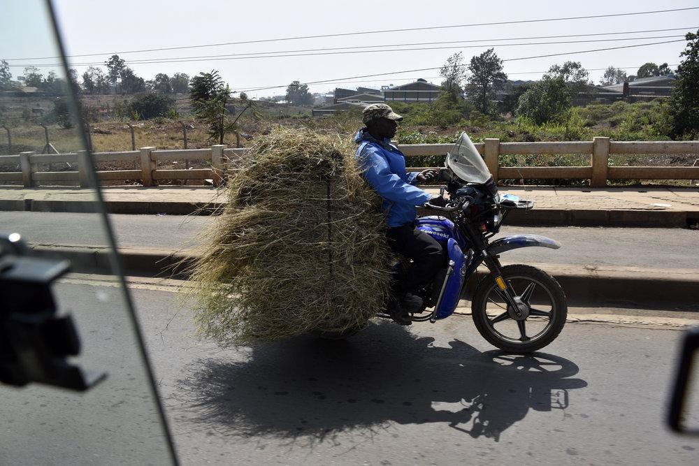 grassmotorcycle_kenya.jpg