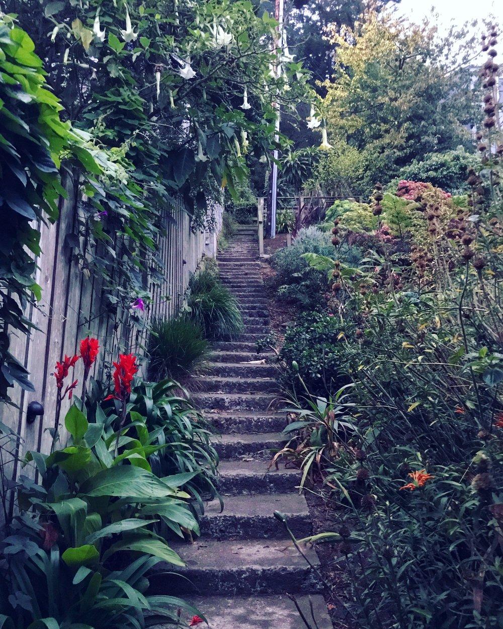 The Path.JPG