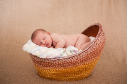 Jessica Zekus - Newborn Bassinet, Winner of the Fanciful award