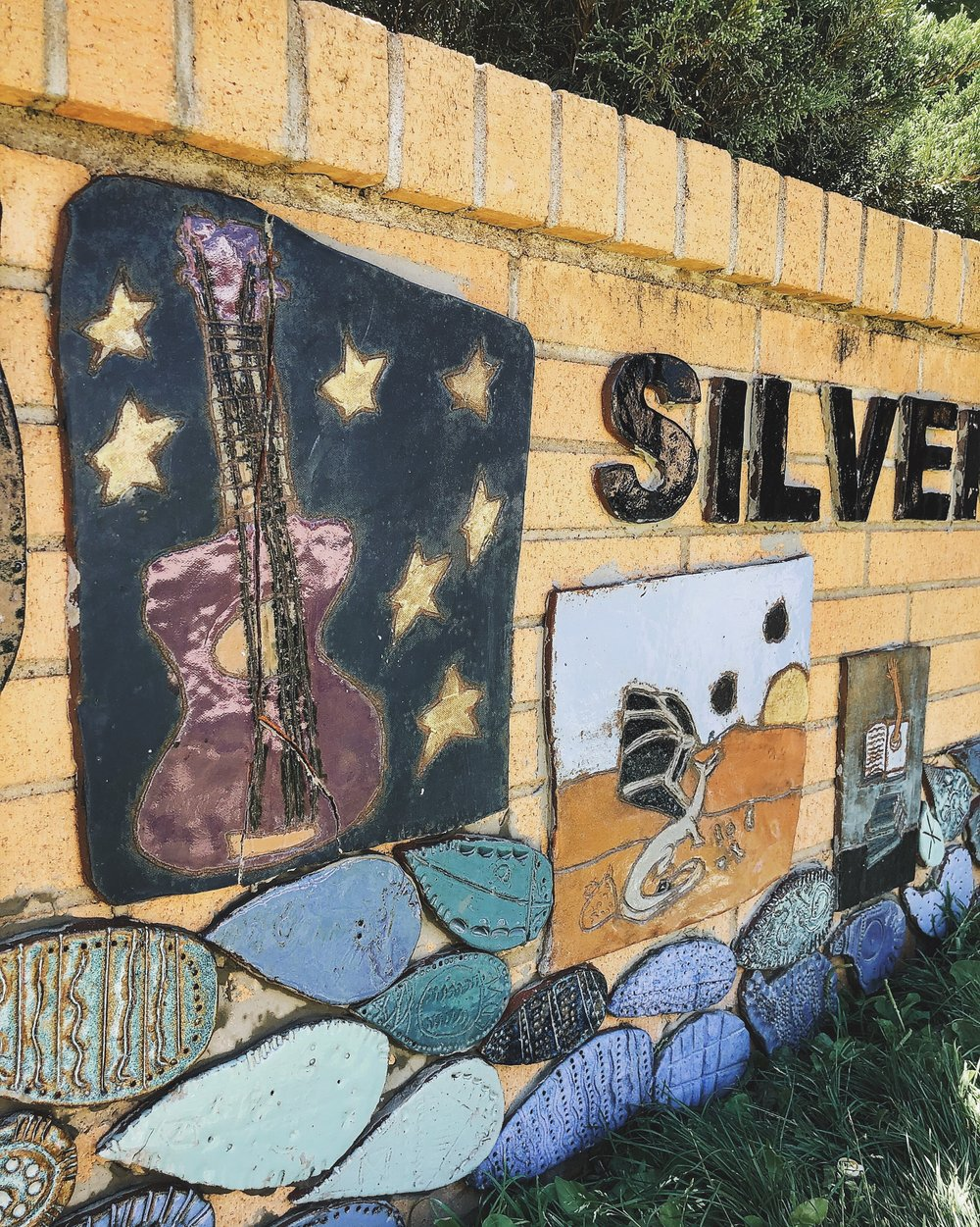 The Public Library of Silver City