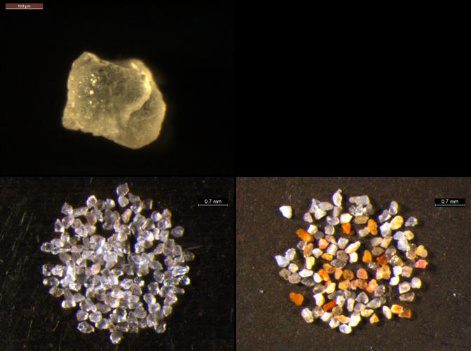 A quartz grain (TOP), a quartz multi-grain aliquot (BOTTOM LEFT), and a K-feldspar-rich multi-grain aliquot (BOTTOM RIGHT) extracted from alluvial sand from the Middle Son Valley, Madhya Pradesh, India. Photo credits: Christina Neudorf