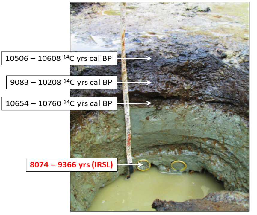 A comparison between radiocarbon and luminescence (IRSL) ages from peat and beach sand, respectively on Calvert Island, BC, Canada. Photo credit: Christina Neudorf.