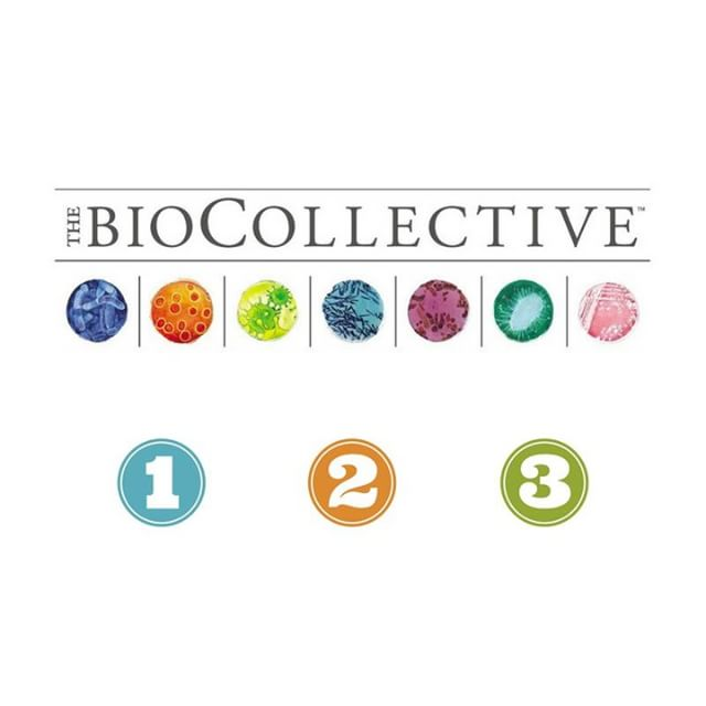 New to TBC? It's simple as one, two, three!  Here at the BioCollective we... 1.) Collect fecal microbiome samples 2.) Analyze their bacterial DNA with metagenomic sequencing 3.) Create a bacterial model to mimic the gut ecosystem and use it drive the design of thoughtful probiotic formulations  Still have questions? Post them in the comments below! 🙋  #probiotics #guthealth #thebiocollective #microbemadness #shotgunsequencing #bacterial DNA #microbiomeresearch #denverstartup