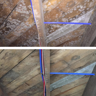 pure-air-solutions-services-mold-remediation.png