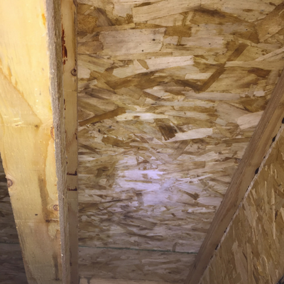 after mold remediation work in crawl space