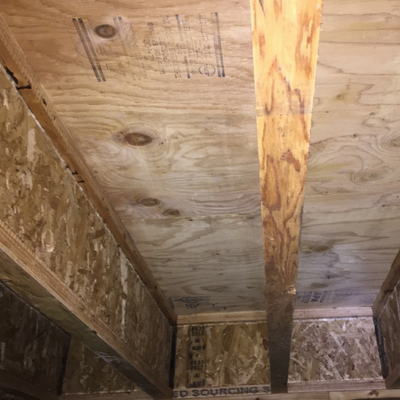 after mold remediation work