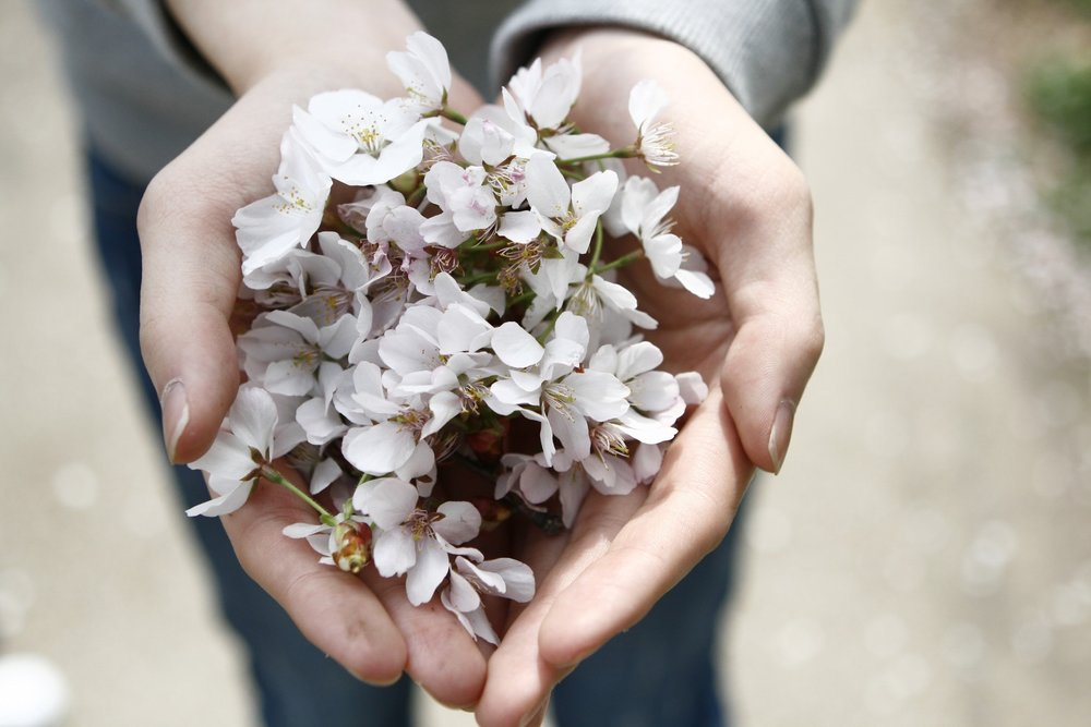 Blog Post-Hands holding flowers.jpeg