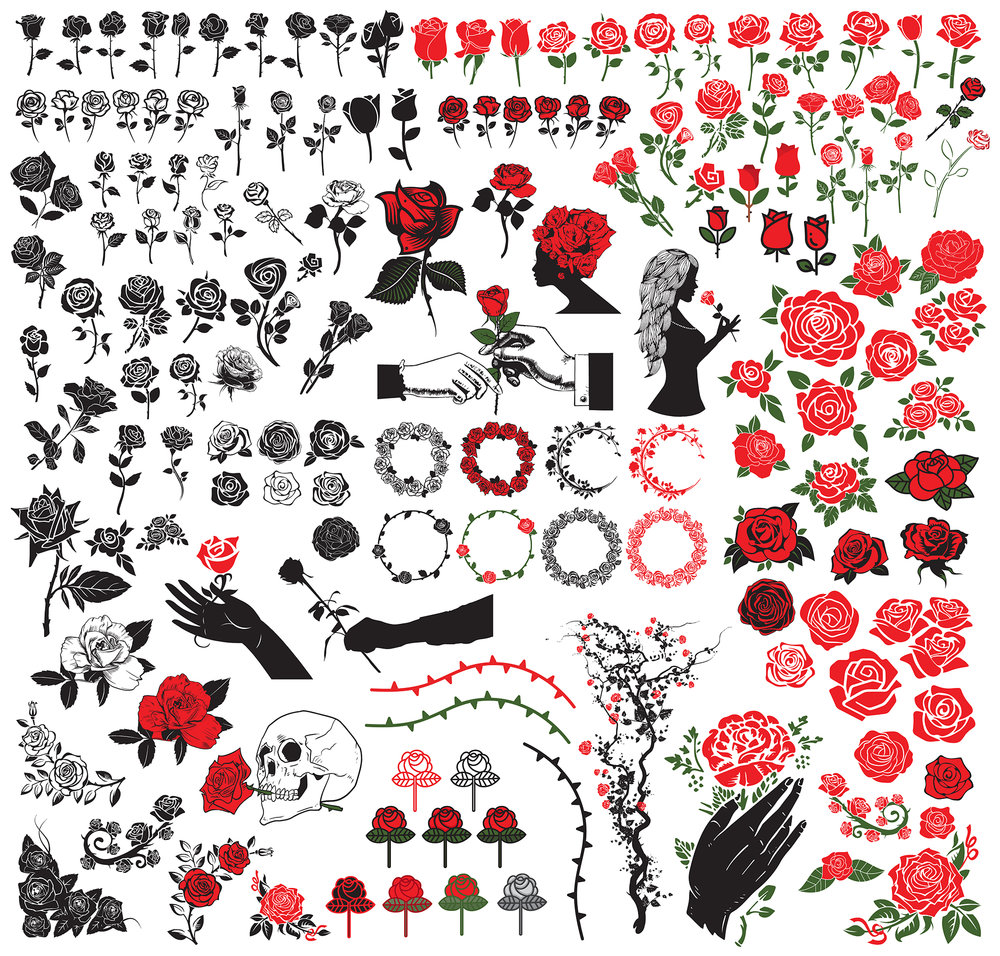 02 - roses web.jpg