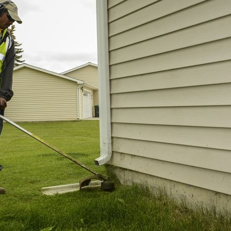 Trim shrubs and even grass away from the house.