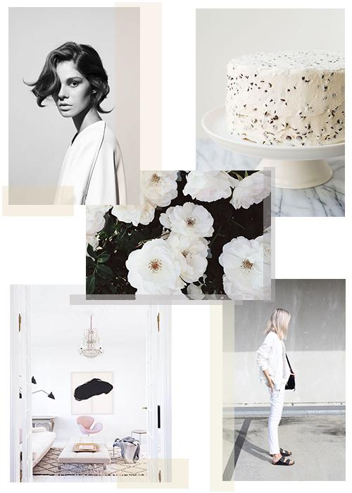 Color Crush_White Wash