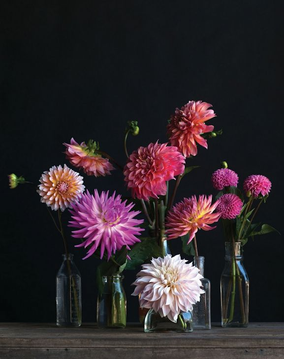 counter-top-flowers