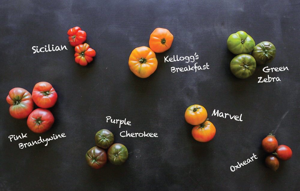 heirloomtomatoes.png