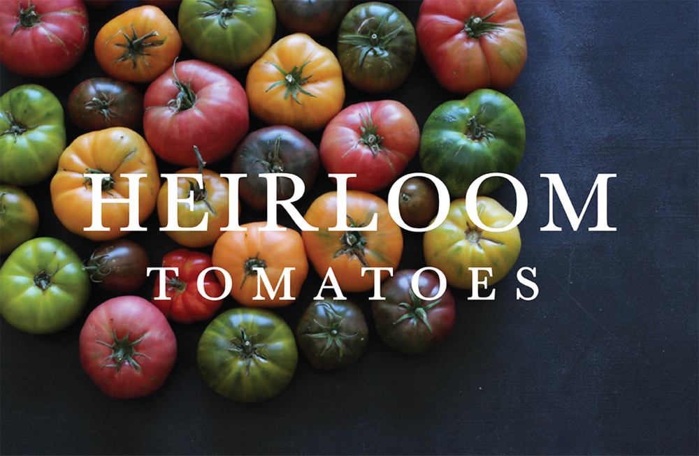 heirloom tomatoes title.png