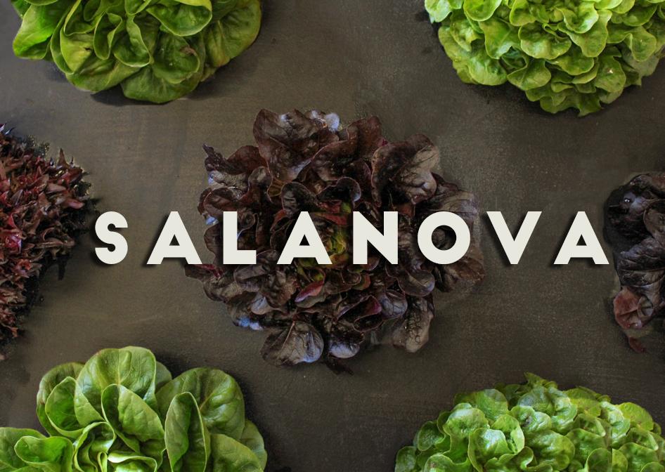 salanova.jpg