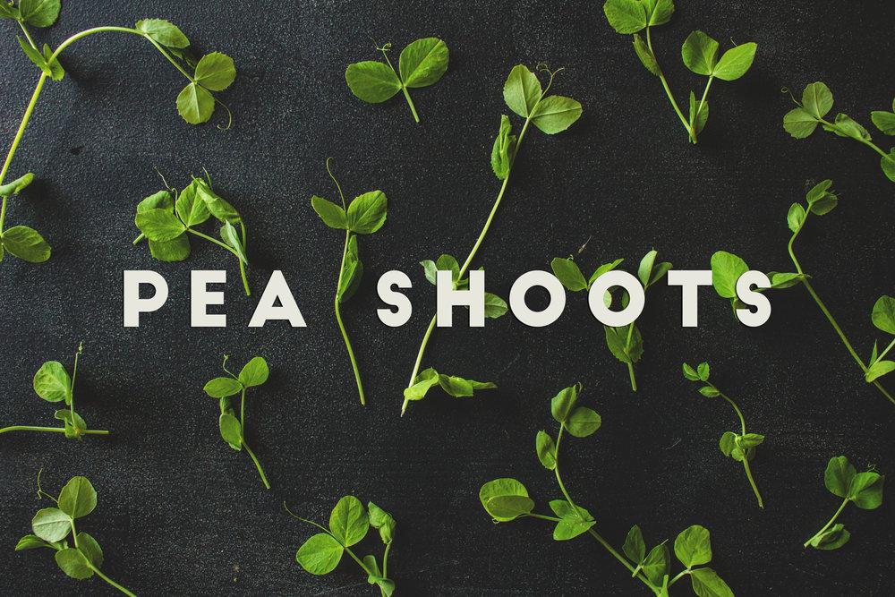 Pea Shoots 1.jpg